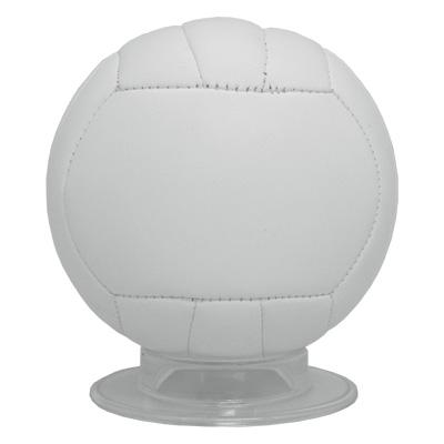 ミニバレーボール