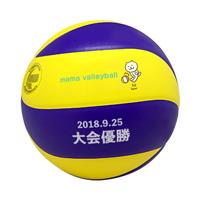 MIKASA バレーボール 5号 練習球