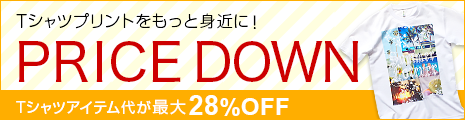 Tシャツアイテムが最大28%OFFのPRICE DOWN