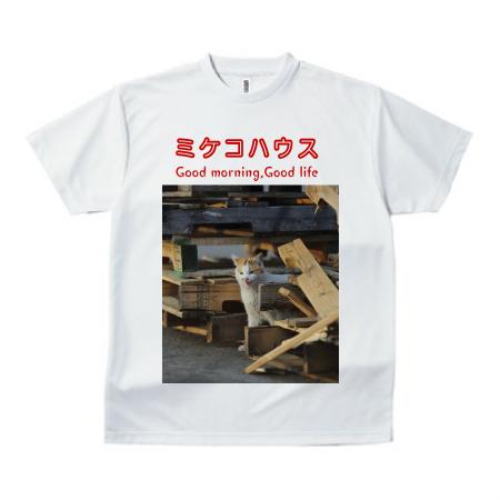 三毛猫の写真をプリントしたオリジナルTシャツ