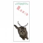 ネコ写真のオリジナルタオル