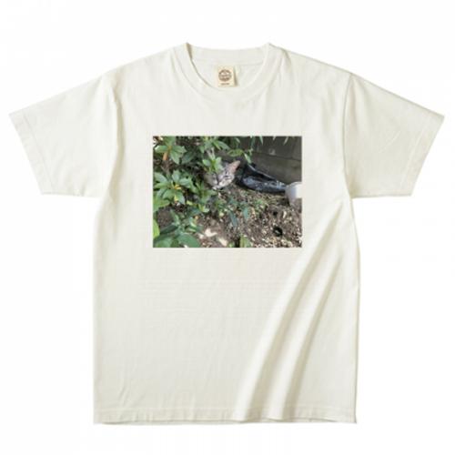 オリジナルの猫写真Tシャツ