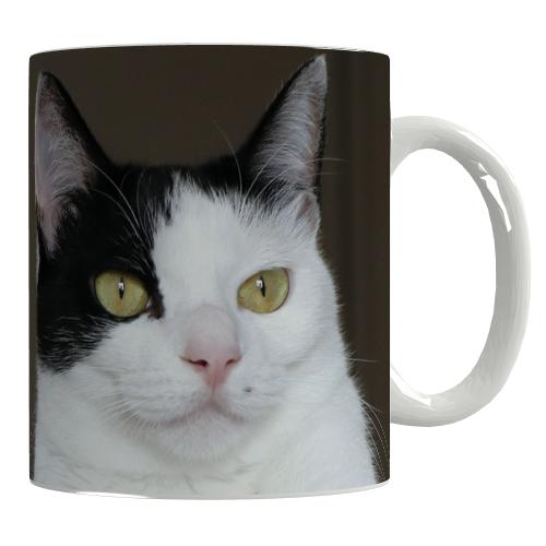 猫に癒される全面印刷マグカップ