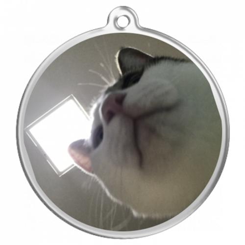 猫写真をプリントしたオリジナルキーホルダー