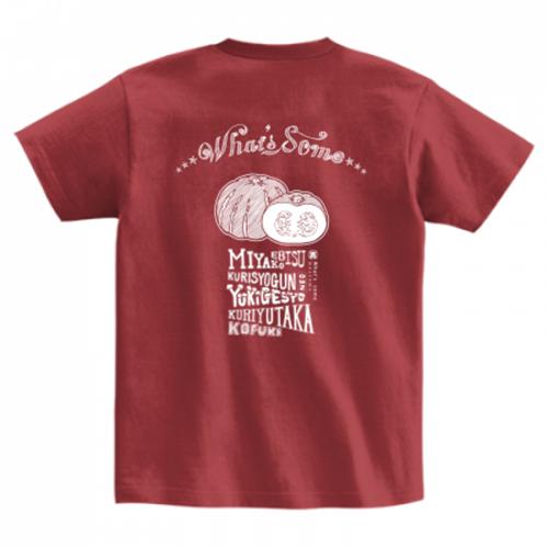 カボチャのイラストがお洒落にプリントされたTシャツ