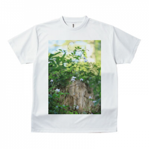 鮮やかな緑の写真をプリントしてオリジナルTシャツを作成