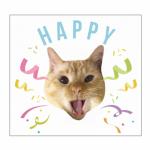 愛猫写真をデザインしたオリジナルのミニタオル