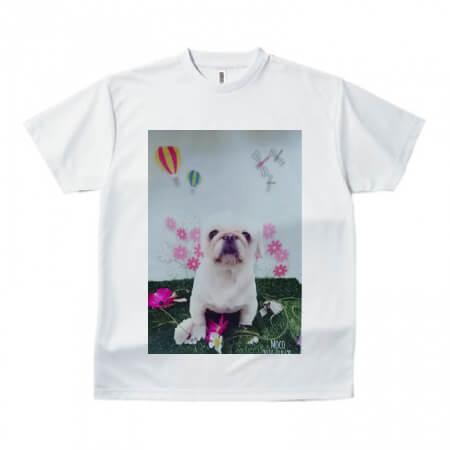 愛犬写真のオリジナルTシャツを作成