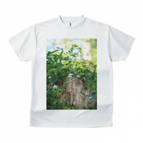 鮮やかな緑の写真のプリントTシャツ