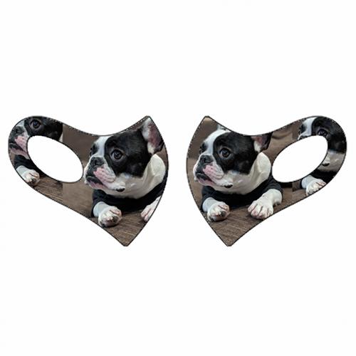 愛犬写真をプリントしてオリジナルマスクを作成