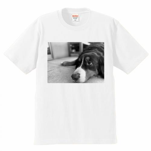 愛犬写真をプリントしてオリジナルTシャツを作成